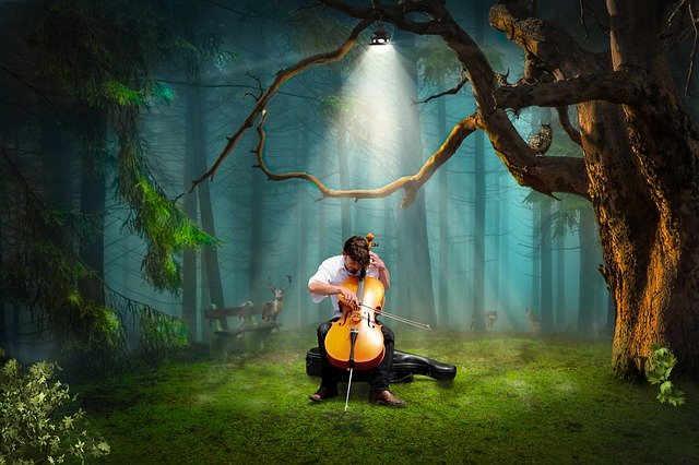 森の中でチェロを弾く人