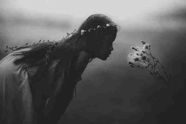 花の綿毛を見ている女の子