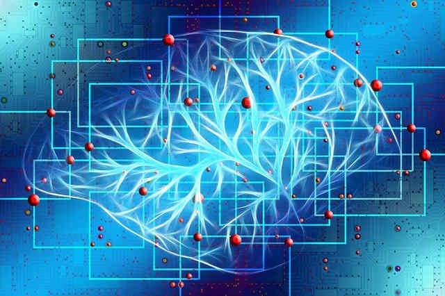 脳の神経のつながり